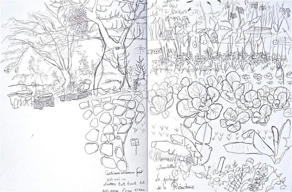 http://www.virginiebroquet.fr/wp-content/uploads/2015/01/7-le-Baobab-du-potager.jpg