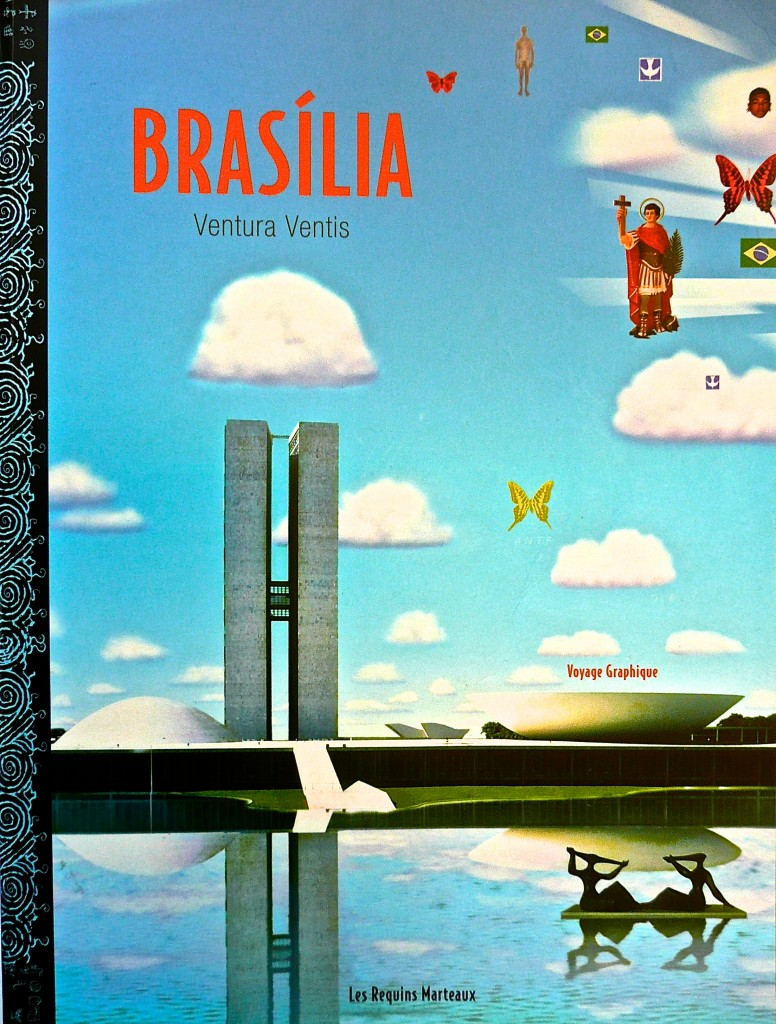 http://www.virginiebroquet.fr/wp-content/uploads/2015/02/5-Brasilia.jpg