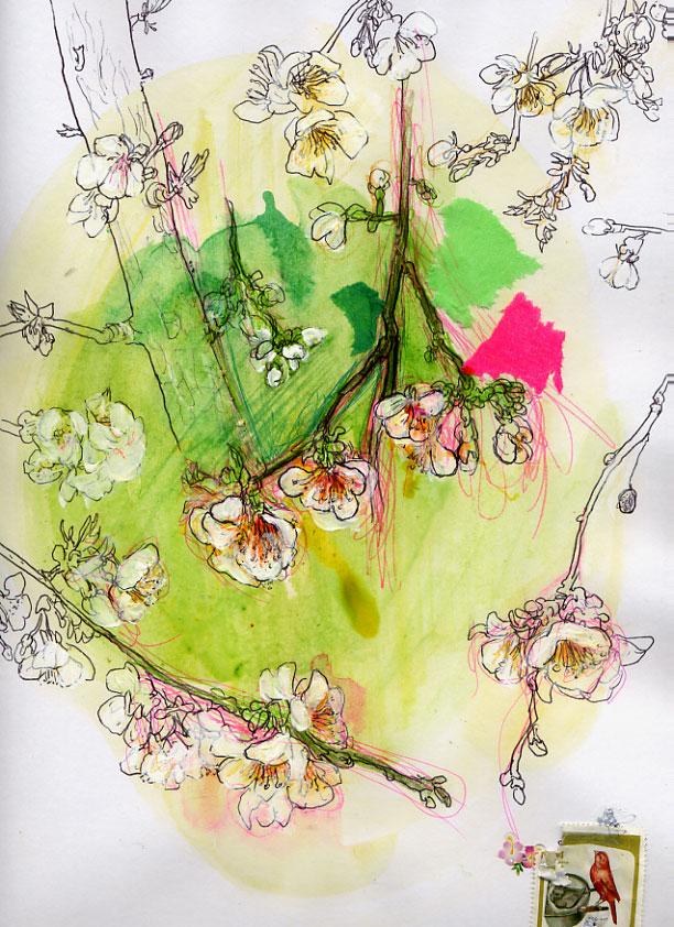 http://www.virginiebroquet.fr/wp-content/uploads/2015/02/eve-agenda-fleursceris.jpg